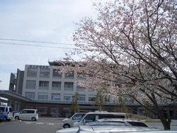 sakura_byoin.jpg